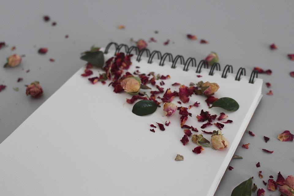 Παυλίνα Παμπούδη: Χλόη Κουτσουμπέλη – Το σημείωμα της οδού Ντεσπερέ, εκδ. Πόλις